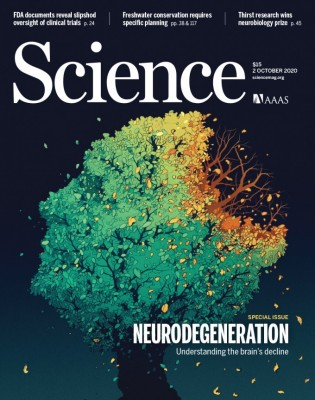 [표지로 읽는 과학] 가장 슬픈 질병 '퇴행성 뇌질환' 극복을 위한 노력