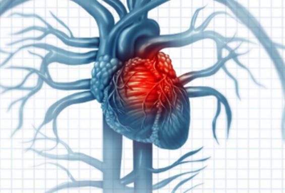 코로나19 젊은층 심장에 영향줄 수 있어