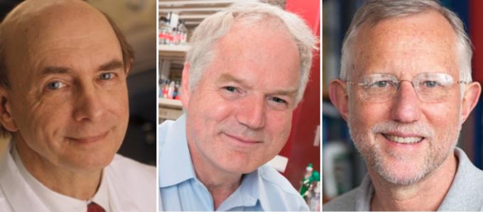 스웨덴 카롤린스카 의대 노벨위원회가 2020 노벨생리의학상 수상자를 발표했다. (왼쪽부터) 하비 올터(85) 미국 국립보건원(NIH) 부소장과 마이클 호턴 캐나다 앨버타대학교 교수, 찰스 라이스(68) 미국 록펠러대학교 교수. 노벨위원회 제공