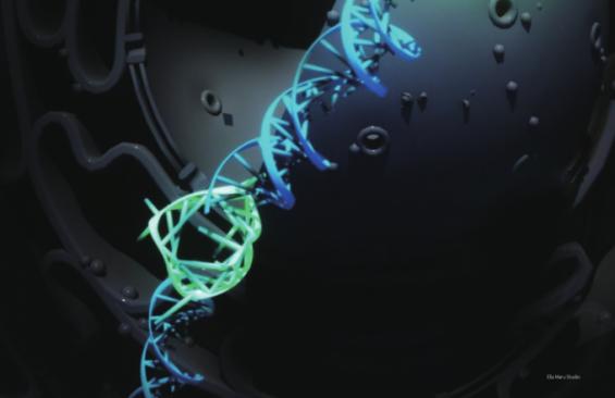 [프리미엄 리포트] 네가닥으로 꼬였다! DNA 사중나선