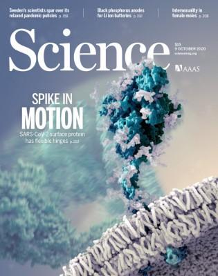 [표지로 읽는 과학] 코로나바이러스, 유연한 관절 달린 스파이크로 인체 침투한다