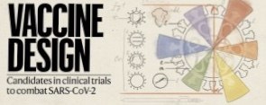 [표지로 읽는 과학]코로나에 맞서는 백신 설계 전략의 '현재'