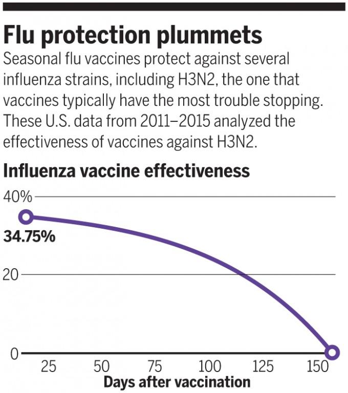 최근 연구결과에 따르면 독감 백신 접종 효과의 지속성은 기존에 알려진 6개월에 못 미친다. H3N2의 경우 백신유효성이 낮을 뿐 아니라 그나마도 5개월이 지나면 완전히 사라진다. 따라서 고령자는 1월에 한 번 더 접종하는 게 나을 수도 있다.  자료 임상전염병 / 사이언스 제공