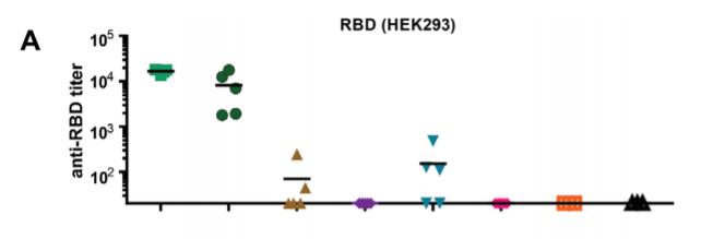 RBD 나노 입자와 여러 면역보조제를 4마리의 쥐에 넣었을 때 생성되는 항체의 양을 비교한 그림. 녹색 네모가 RBD 나노 입자와 면역 보조제인 MPLA, QS21를 함께 넣은 경우고 분홍색 마름모가 명반만 넣은 경우다. 어드밴스드 머티어리얼스 논문 캡쳐