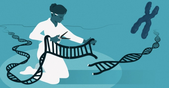 노벨상 영예 '유전자가위' 유전질환 치료 '더 가까이'