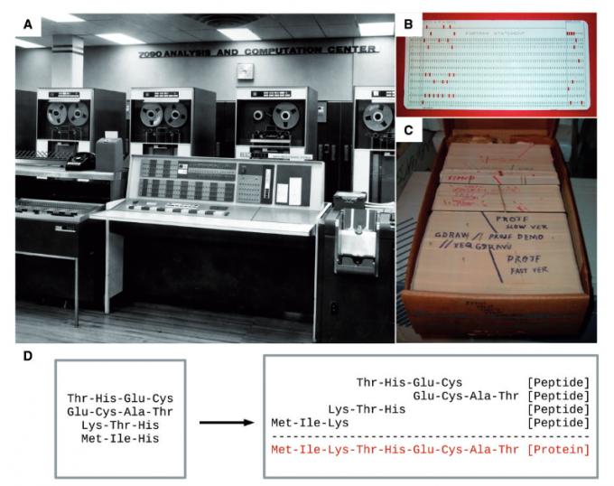 포트란을 언어로 사용해 천공 컴퓨터로 아미노산 서열을 분석하던 생물정보학의 초창기 모습 Gauthier, J., Vincent, A. T., Charette, S. J., & Derome, N. (2019). A brief history of bioinformatics. Briefings in bioinformatics, 20(6), 1981-1996.