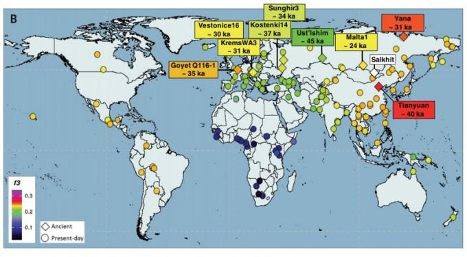 살킷(흰 마름모)과 티앤유안(빨간 마름모)인의 게놈을 다른 고인류(마름모) 및 현대인(원) 게놈과 비교한 데이터다. 색이 비슷할수록 게놈 유사도가 높다. 동아시아 및 아메리카 대륙이 다른 곳보다 유사하다. 사이언스 논문 캡쳐