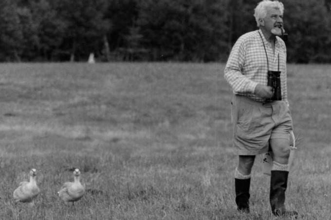 콘라트 로렌츠(1903~1989). 카를 폰 프리슈·니콜라스 틴베르헌과 함께 동물행동학에 대한 업적으로 노벨 생리의학상을 수상했다.거위와 오리에 대한 연구를 통해 조류는 태어나서 처음 본 움직이는 물체를 어미로 인식하는 본능(각인)을 갖고 있음을 발견한 것으로 유명하다. 위키피디아 제공