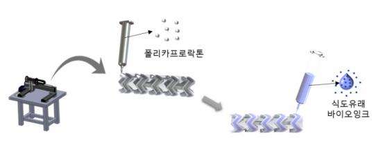 3D 프린터로 체내에서 녹는 식도 스텐트 출력한다