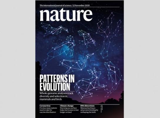 [표지로 읽는 과학] 동물 연구 판도 바꾸는 게놈 분석