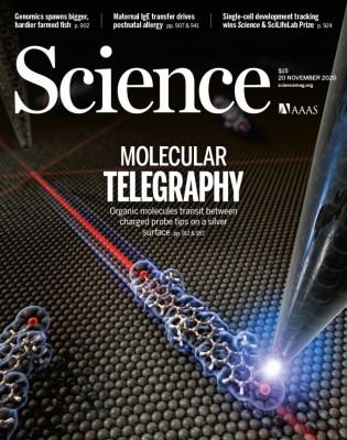 [표지로 읽는 과학] 단일 분자 먼 거리 전송하는 '분자 전신' 현상