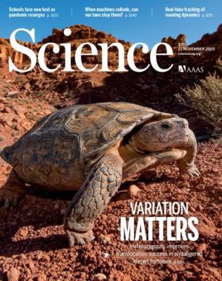 [표지로 읽는 과학] 집 이사한 사막거북 166마리 누가 잘 생존할까