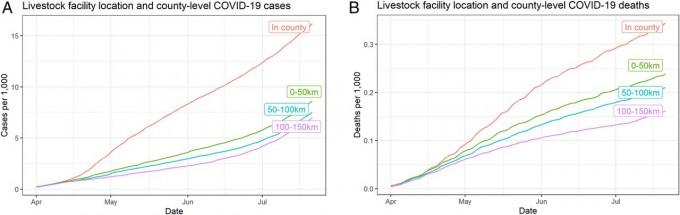 미국 컬럼비아대 연구팀이 분석한 코로나19 환자 발생 그래프다. 카운티 내에 육류가공공장이 있는 경우(빨간색 그래프)가 다른 경우에 비해 환자수(왼쪽)와 사망자 수(오른쪽) 모두 급격히 증가함을 알 수 있다. PNAS 논문 캡쳐