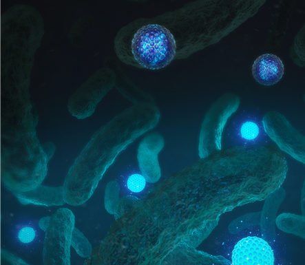 병원균의 항생제 내성 여부 눈으로 판별한다