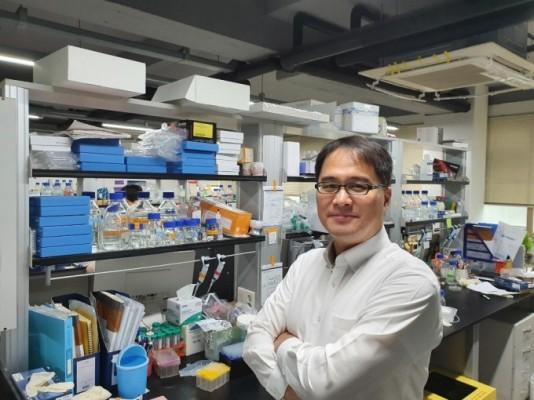일반세포를 신경세포로 바꿔 뇌질환 극복한다…김종필 교수 이달의 과학기술인상