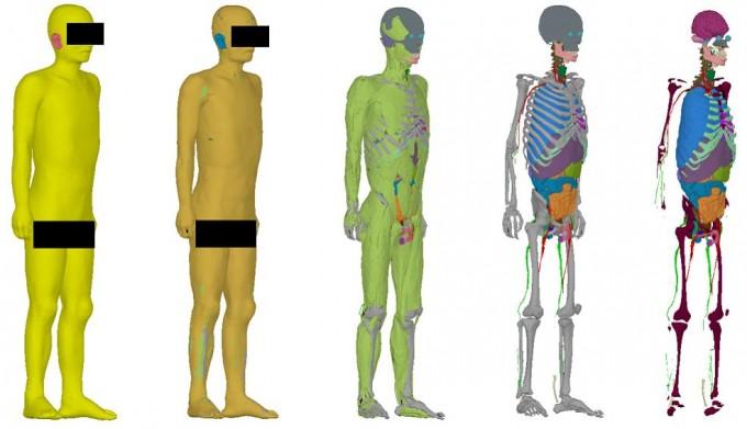 연구진이 공개한 남자 성인 전신 모델. ETRI 제공.