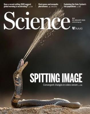 [표지로 읽는 과학] 퉤! 독침 뿜는 코브라의 비밀