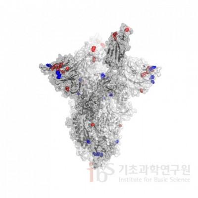 국내 코로나 변이 바이러스 감염자 9명 추가 확인…총 27명으로 늘어