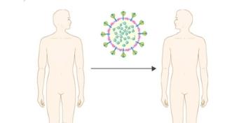[IBS 코로나19 리포트 시즌2] 면역 체계, 돌연변이 방어할 수 있나?
