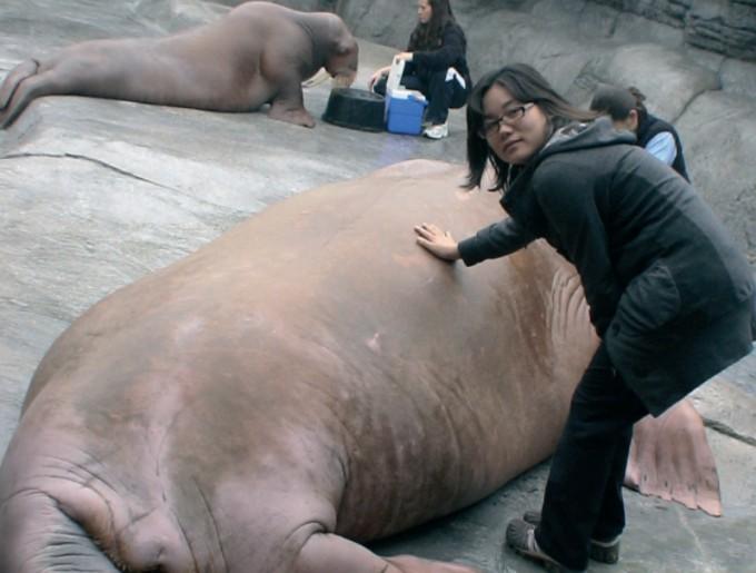 전 세계 동물 연구성과를 공유하는 세계동물원수족관협회(WAZA) 총회에 참가하기 위해 2009년 미국을 찾아 인디에나폴리스동물원과 콜럼버스동물원을 견학했다. 마승애 제공