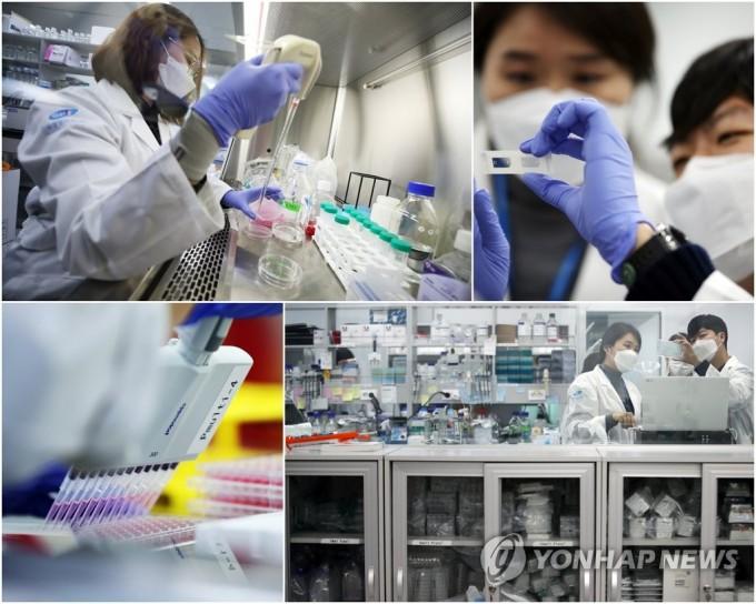서울 강남구 진원생명과학 연구소에서 연구원이 코로나19 백신 개발 관련 연구를 하는 모습.