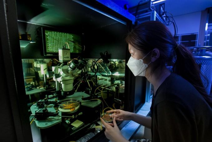 연구원이 현미경으로 소재의 세부 구조를 들여다보고 있다. 남윤중 제공