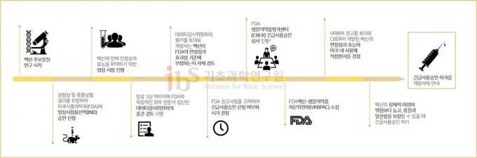 코로나19 백신이 개발되어 긴급 사용승인을 받기까지의 과정. IBS 제공