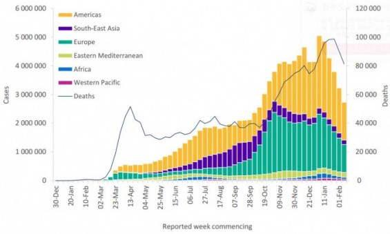전세계 코로나19 확진자 5주 연속 줄었다