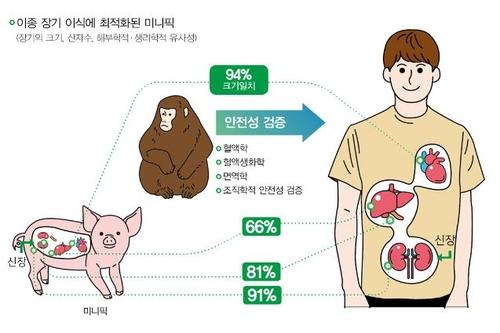 돼지 신장 이식한 원숭이 국내 최장 64일째 생존
