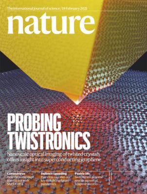 [표지로 읽는 과학]나노 안테나로 그래핀 초전도성의 비밀 캔다