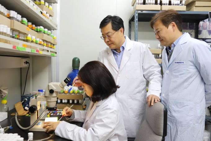 유권 생명연 책임연구원(가운데)이 실험실에서 연구에 몰두하고 있다. 생명연 제공.