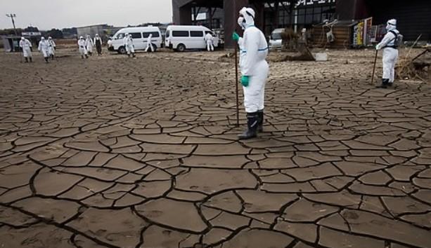 일본 방사선 오염지역을 수색하는 모습이다. AP/연합뉴스 제공