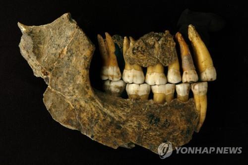 '네안데르탈인 2만4천년 전까지 살았다'는 연대측정 오류 결과