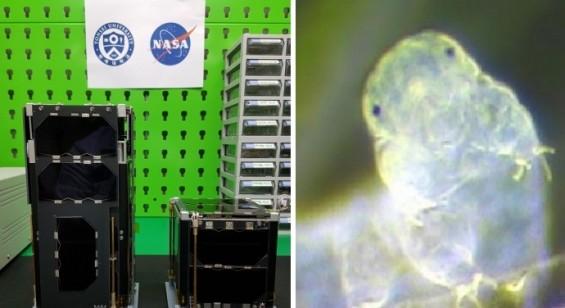 차세대중형위성1호와 함께 우주 향한 국산 큐브위성도 '첫 신호'