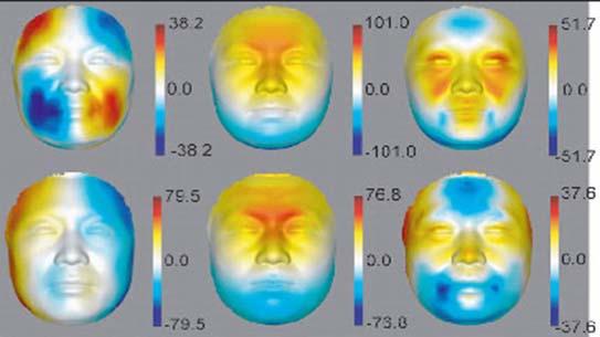 x축과 y축, z축을 기준으로 한, 얼굴 입체 구조에 따른 열 분포도
