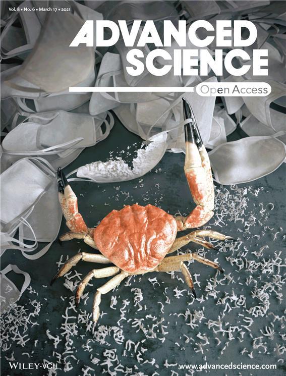 연구팀의 연구결과는 국제학술지 ′어드밴스드 사이언스′ 표지논문으로 발표됐다. 화학연 제공