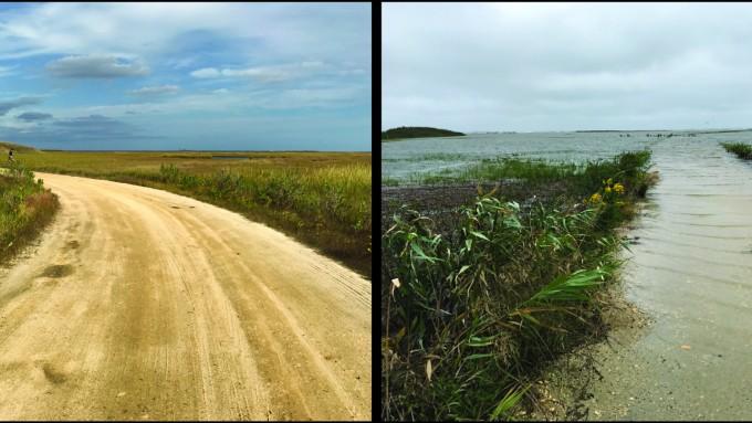 해수면이 상승하면 홍수 위험이 높아진다. 두 사진은 같은 장소를 2016년 10월(왼쪽)과 9월(오른쪽)에 찍은 것이다. 제니퍼 워커 제공