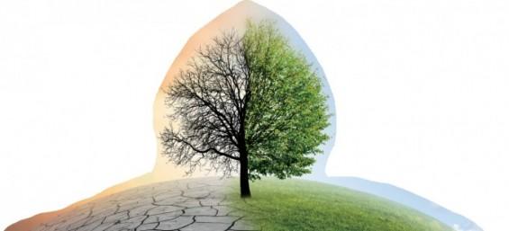[프리미엄 리포트] '탄소 저감 실패 우려 국가'라는 오명 씻으려면