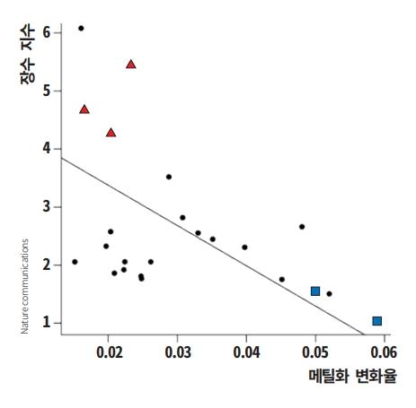 미국 로스앤젤레스 캘리포니아대(UCLA)와 GIB 메릴랜드대 공동연구팀이 26종의 박쥐 유전자를 분석한 결과, 노화가 진행되며 메틸화 패턴이 빠르게 변하는 박쥐일수록 수명이 짧았다. 수명이 평균보다 긴 박쥐 3종(붉은 삼각형)과 평균과 비슷한 박쥐 2종(파란 사각형)의 메틸화 변화율에 따른 장수 지수를 그래프로 나타냈다. 네이처 커뮤니케이션 제공