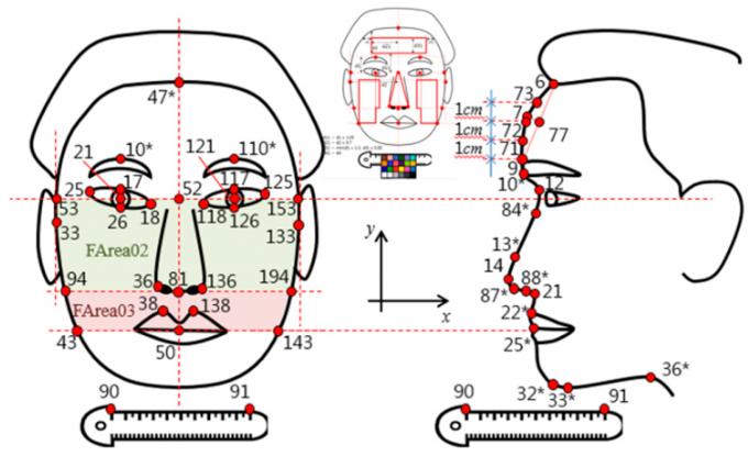 한의학의 망진에서 관찰하는 얼굴의 특성들을 기준으로 정량적인 정보를 획득할 수 있도록 얼굴의 부위별 색상과 형태를 추출했다. 한의학연 제공