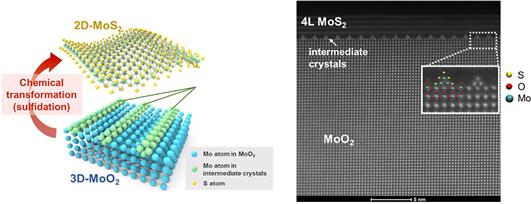 이황화몰리브덴 분자들이 층을 형성하기 전 단면이 삼각형인 여러 줄로 늘어선다(오른쪽 그림 위쪽). 연구팀은 이황화몰리브덴의 층이 쌓이다 보면 반도체 특성이 특정 순간 n형에서 p형으로 바뀐다는 사실도 확인했다. 성균관대 제공