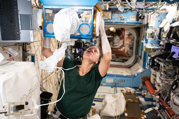 미국 물리학자인 NASA 소속 우주인 섀넌 워커는 미세중력 환경에서 눈의 동맥, 정맥, 림프관 구조의 기능과 우주 비행 전후의 망막 변화를 연구했다. NASA 제공