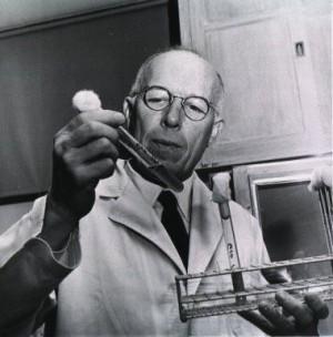르네 듀보스 (1982~1902)