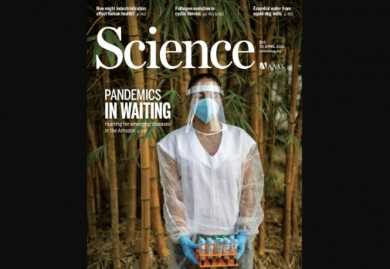 [표지로 읽는 과학] 열대우림에서 '제2의 코로나19' 막는다