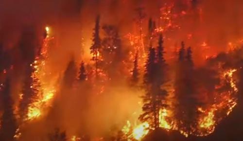 북반구 눈 밑서 겨울 난 뒤 재발화하는 '좀비' 숲 화재