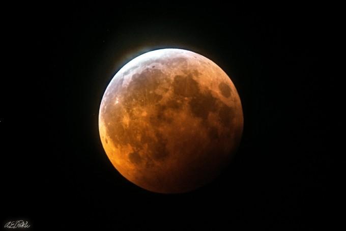 미국 캘리포니아주 그리피스천문대에서 촬영된 개기월식의 모습. 그리피스천문대 제공