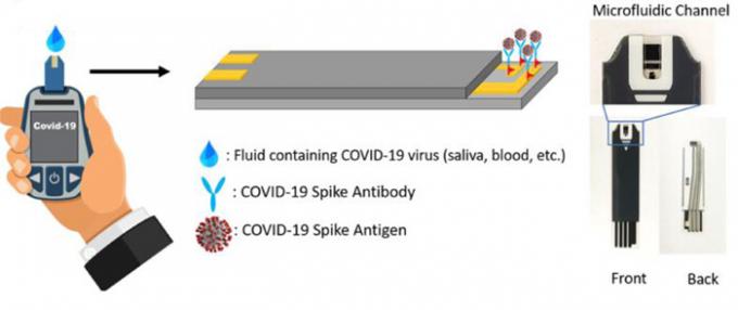 미국 플로리다대가 반도체 소자를 이용해 개발한 신종 코로나바이러스 감염증(코로나19) 바이러스 검출기. 연구진은 1초 만에 검출할 수 있다고 설명한다. 플로리다대 제공