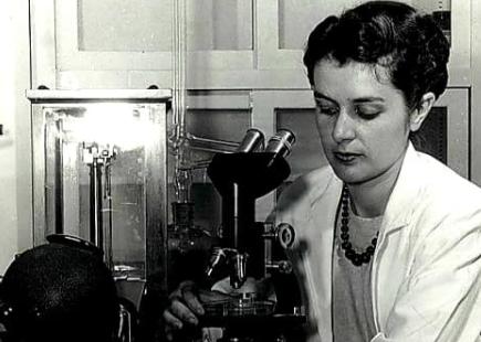 마가렛 허틴슨 루소는 페니실린 대량생산에서 결정적인 역할을 수행한 여성 화학공학자다. 마가렛 허친슨 루소는 페니실린 대량생산에서 결정적인 역할을 수행한 여성 화학공학자다. 월터P로이터 도서관 제공