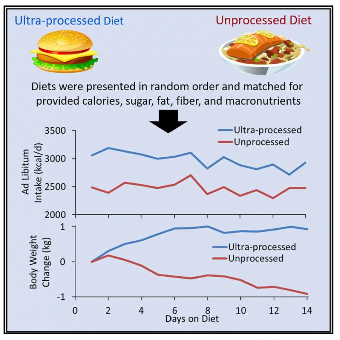 탄수화물과 지방, 단백질 비율이 50:30:20 내외로 비슷해도 초가공 식단이냐 비가공(자연) 식단이냐에 따라 칼로리 섭취량과 몸무게 변화는 큰 차이가 나는 것으로 밝혀졌다. 과체중인 참가자들에게 초가공식품을 마음대로 먹게 하자 2주 동안 자연음식을 먹을 때에 비해 하루 평균 500칼로리를 더 섭취했고 몸무게는 0.9㎏ 늘었다. 반면 자연음식을 2주 동안 먹자 몸무게가 0.9㎏ 줄었다. ′셀 대사′ 제공