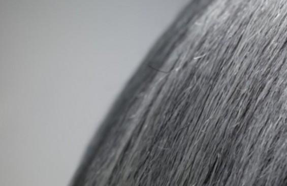 스트레스로 생긴 흰 머리카락…휴가 다녀오면 원래 머리색으로 돌아온다